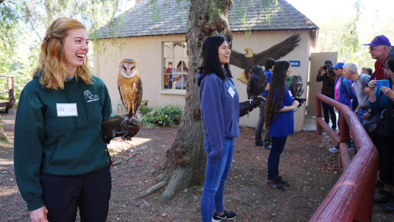 california raptor center open house
