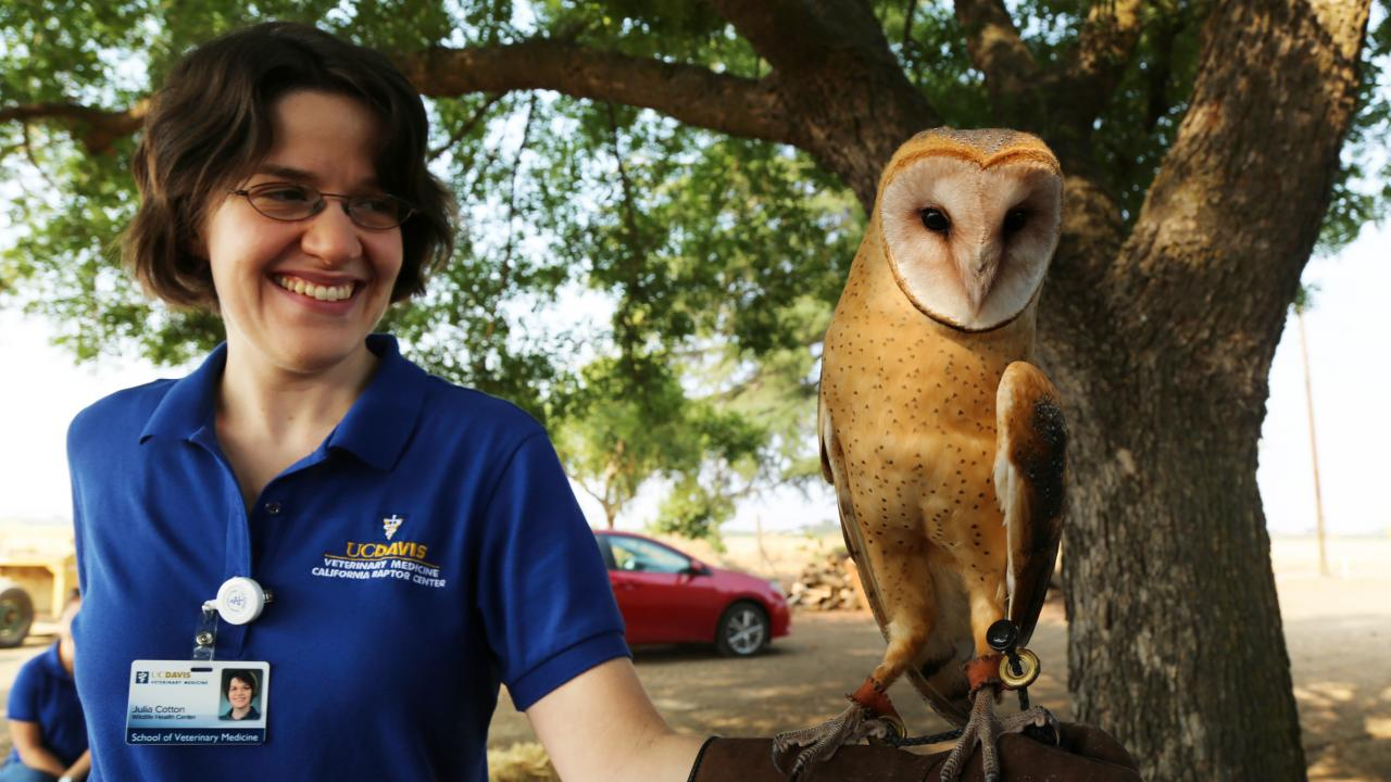 Julie with Ember the Barn Owl