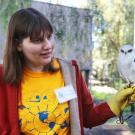 volunteer with white tailed kite
